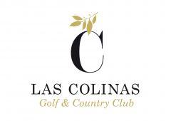 cropped-lcp-lc-logo.jpg