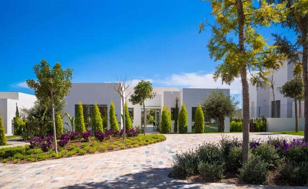 Limonero Villa - Las Colinas Golf